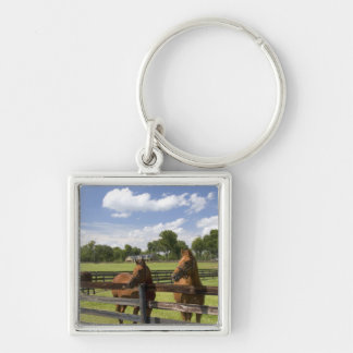 Thoroughbred horse farm in Marion County, Silver-Colored Square Key Ring