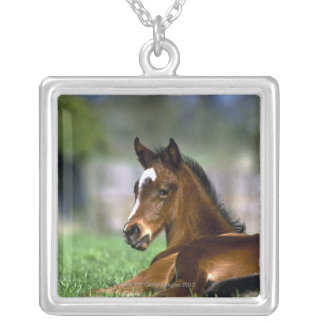 Thoroughbred Horse, Ireland Silver Plated Necklace