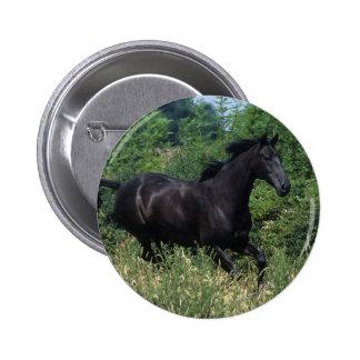 Thoroughbred Horse Running in Grass 6 Cm Round Badge