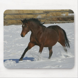 Thoroughbred Horse Running in the Snow Mouse Pad