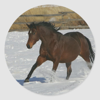 Thoroughbred Horse Running in the Snow Round Stickers