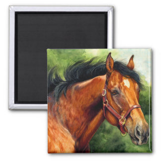 Thoroughbred Horse Square Magnet