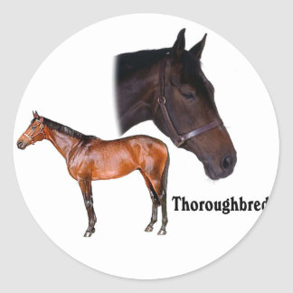Thoroughbred Horse Stickers