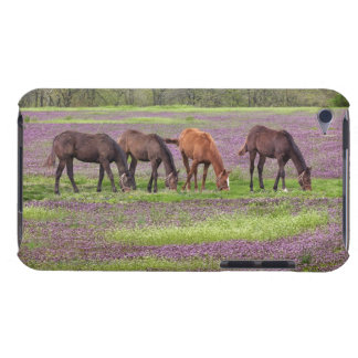 Thoroughbred horses in field of henbit flowers barely there iPod covers