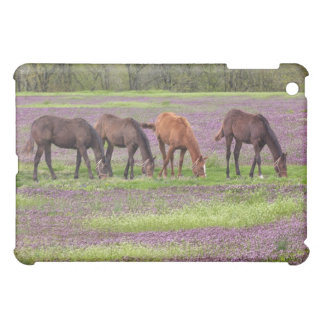 Thoroughbred horses in field of henbit flowers cover for the iPad mini