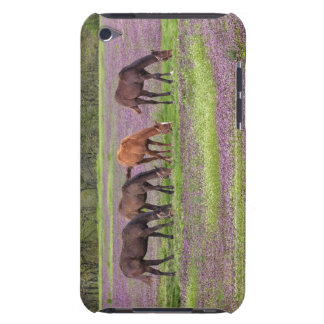 Thoroughbred horses in field of henbit flowers iPod Case-Mate case