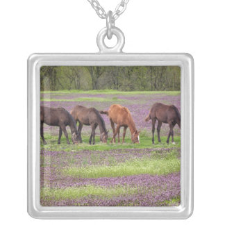 Thoroughbred horses in field of henbit flowers silver plated necklace