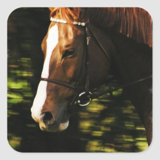 Thoroughbred Mount Stickers
