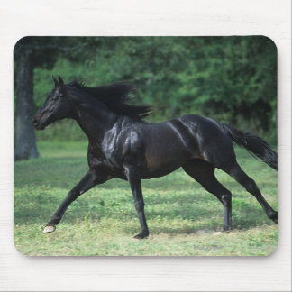 Thoroughbred Running Mouse Pad