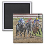 Thoroughbred Square Magnet