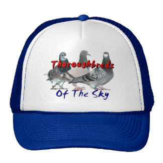 Thoroughbreds of the Sky Trucker Hats