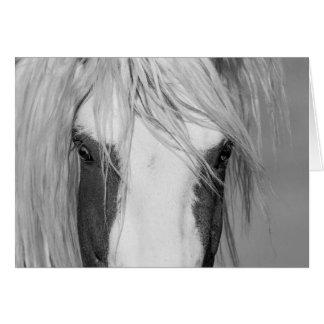 Thor's Eyes - Wild Horse Greeting Card