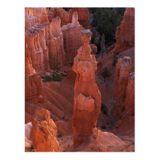 Thor's Hammer hoodoo on Navajo Trail Postcard