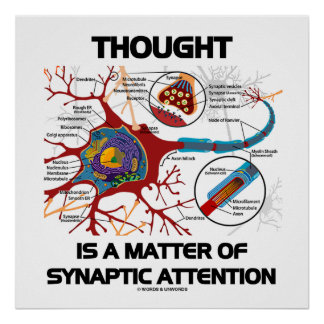 Thought Is A Matter Of Synaptic Attention (Neuron) Poster