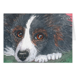 Thoughtful Border Collie Dog Card