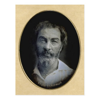 Thoughtful eyes of Poet Walt Whitman Post Card