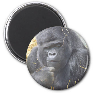 Thoughtful Gorilla Magnet