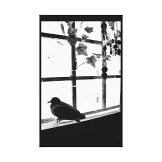 Thoughtful Moment Canvas Print