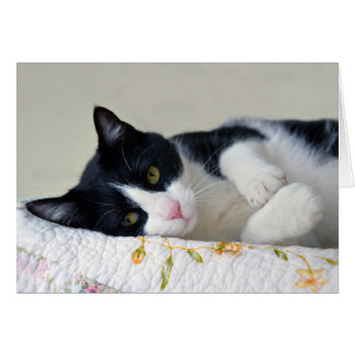 Thoughtful Tuxedo Cat Greeting Card