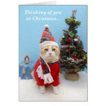 Thoughts of You at Christmas Cards