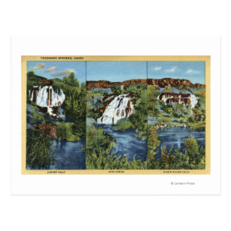 Thousand Springs, ID - Juniper, Wing, and Minnie Postcard