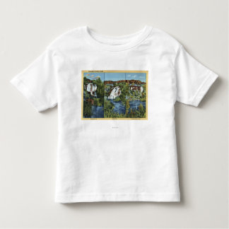 Thousand Springs, ID - Juniper, Wing, and Minnie Toddler T-Shirt
