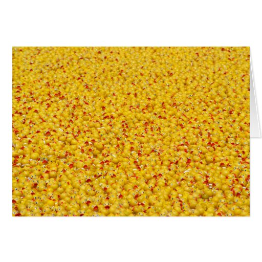 Thousands of ducks  greeting card
