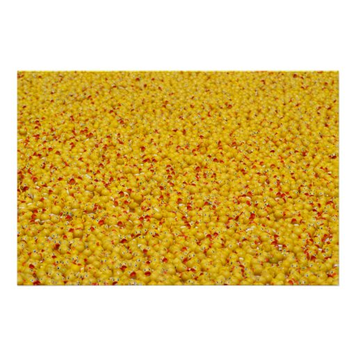 Thousands of ducks  print