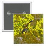 Thread-Waist Wasp on Goldenrod Items Pinback Button