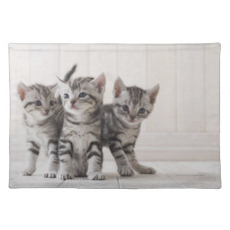 Three American Shorthair Kittens Placemat