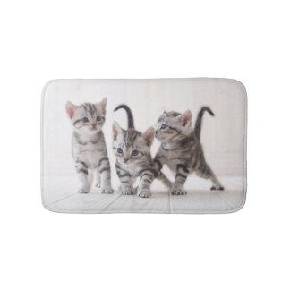 Three American Shorthair Playing Bath Mats
