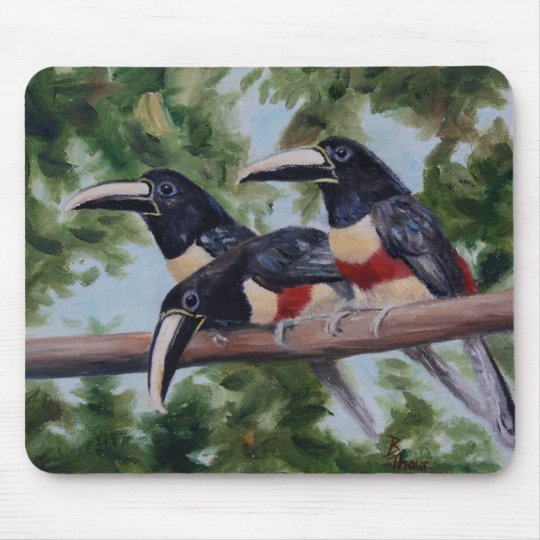 Three Amigo's Toucan Mousepad