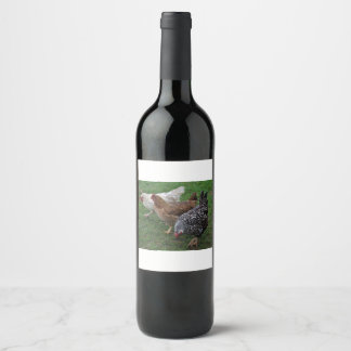 Three Amigos Wine Label