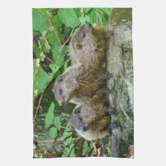 Three Baby Groundhogs Towel