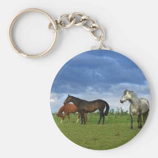 Three beautiful horses on sunny Summer day Basic Round Button Key Ring