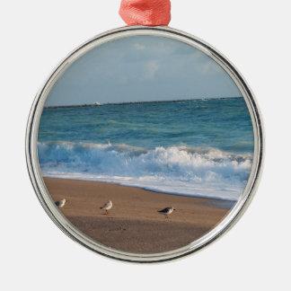 three birds on shore photo florida beach christmas tree ornaments