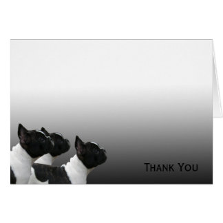 Three Black and White French Bulldogs Note Card