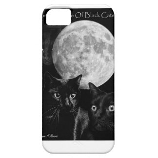 Three black cats and the moon iPhone 5 case