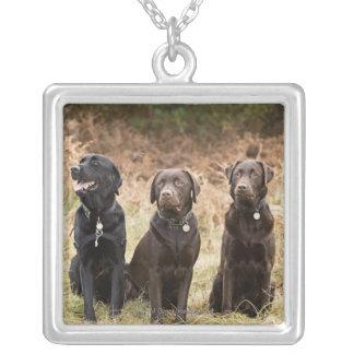 Three Black Labrador retrievers Silver Plated Necklace