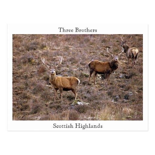 Three Brothers, Scottish Highlands Postcards
