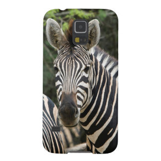 Three Burchell's Zebra (Equus Burchellii) Stand Cases For Galaxy S5