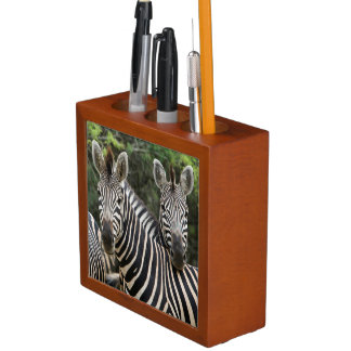 Three Burchell's Zebra (Equus Burchellii) Stand Desk Organiser