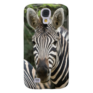 Three Burchell's Zebra (Equus Burchellii) Stand Galaxy S4 Case