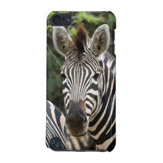 Three Burchell's Zebra (Equus Burchellii) Stand iPod Touch 5G Case