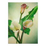 Three Calla Lilies 13 Cm X 18 Cm Invitation Card