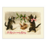 Three cats and a Holly branch