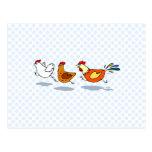 Three Chicks Post Card