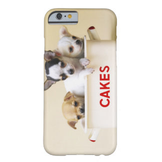 Three chihuahua puppies in cake tin barely there iPhone 6 case
