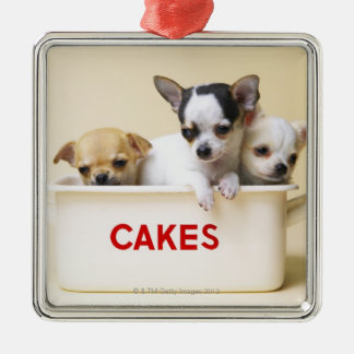 Three chihuahua puppies in cake tin christmas ornament