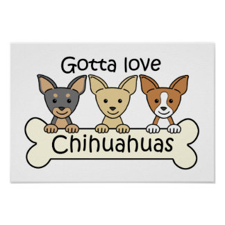 Three Chihuahuas Poster